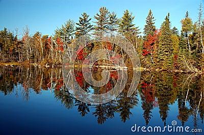 Fall scene at Flack Lake