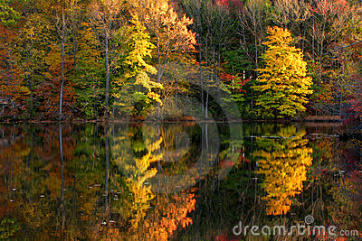 Fall Scene with Lake and Trees Autumn Reflection
