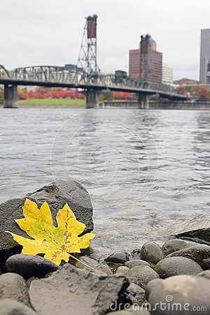 Fall Season Along Willamette River Portland Oregon