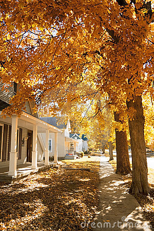 Fall in small town