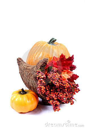 Free Fall - Thanksgiving Decorations Royalty Free Stock Images - 225449