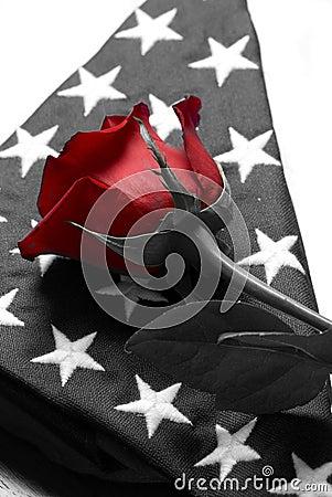 Free Fallen Royalty Free Stock Image - 6367216