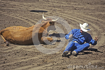 Fallen cowboy at rodeo Editorial Photography