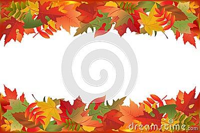 Fallen Leaves. Vector