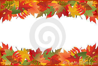 Fallen Leaves. Vector