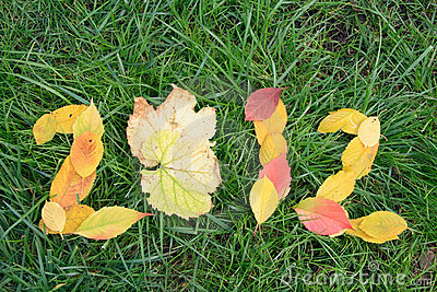 Fallen red and yellow leafs making 2012 digits