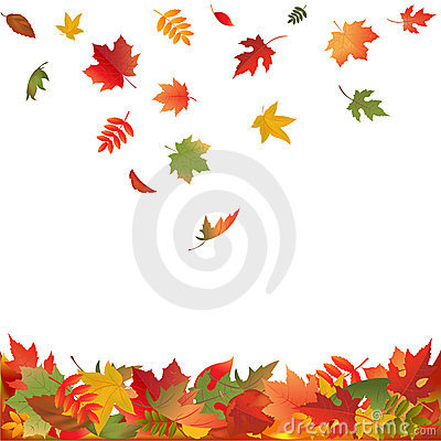 Free Falling Fall Leaves. Vector Stock Photo - 16655120