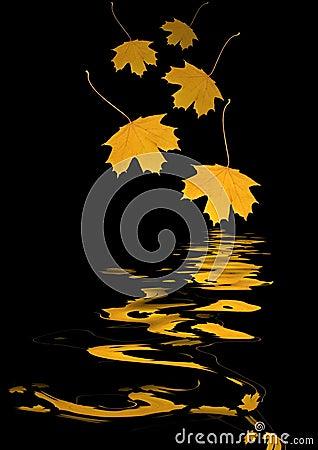 Falling Golden Leaves