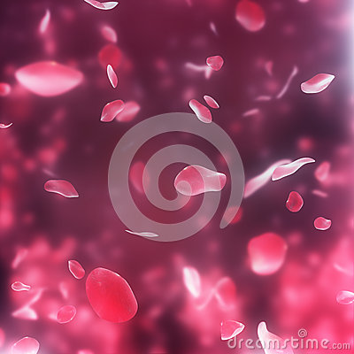 Free Falling Pink Rose Petals Background Stock Images - 29066334