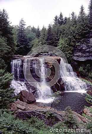 Falls blackwater