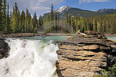 Falls in the rugged mountain river