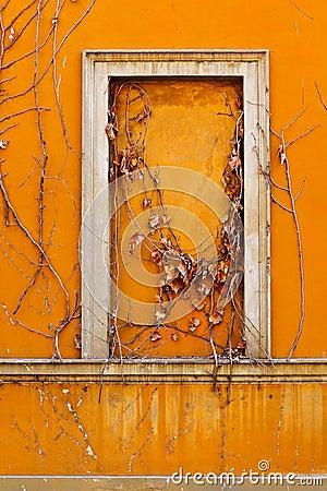False Window
