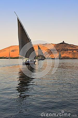 Faluca boat sailing