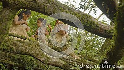Família indígena que faz colar semente mata inseto que o morde filme