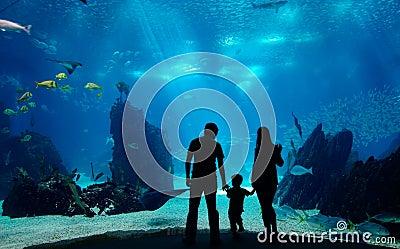 Família subaquática