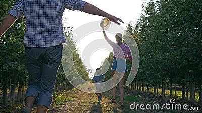 Famiglia allegra dei giardinieri che giocano con il bambino in frutteto durante la raccolta nella lampadina stock footage