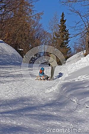 Famiglia e divertimento di inverno