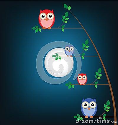 Familie van uilen