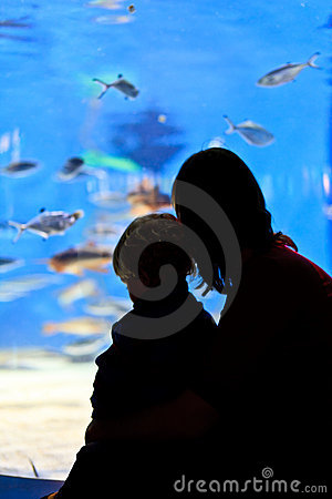 Family in aquarium