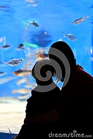 Family in aquarium