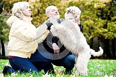 Family embrace irish soft coated wheaten terrier