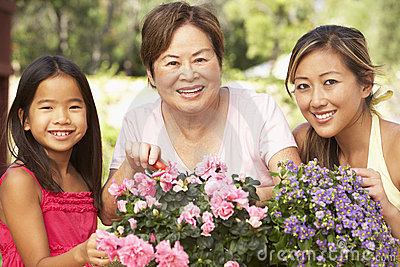 Family Gardening At Home
