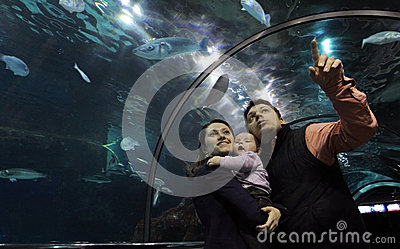 Family in Glass Aquarium