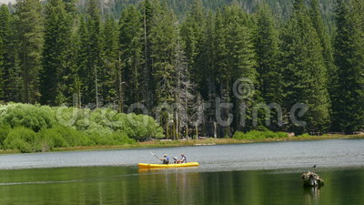 Family in a Kayak on a Lake near the Forest stock video footage