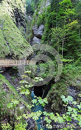 Family and Liechtensteinklamm gorge  (Austria)