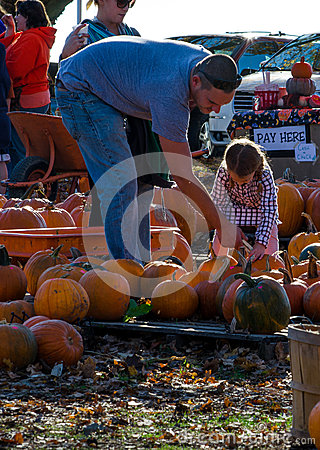 Free Family Pumpkin Royalty Free Stock Images - 28289769