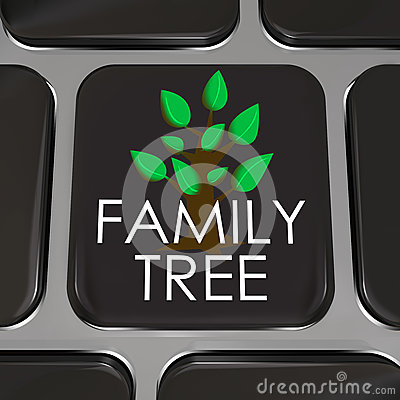 Family Tree Computer Laptop Keyboard Key Button Research History