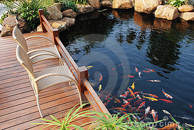 Family villa garden fish pond