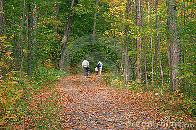 Family Walk in Autumn Woods