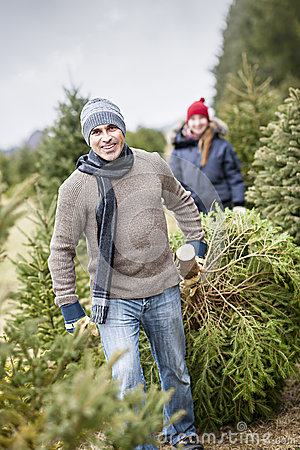 Free Family With Christmas Tree On A Farm Royalty Free Stock Photography - 29677557