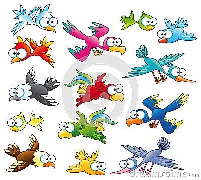 Família dos pássaros