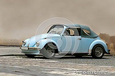 Famous beetle