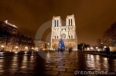 The famous Notre Dame at night in Paris