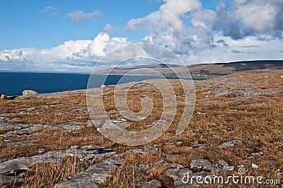 Famous protected burren park landscape