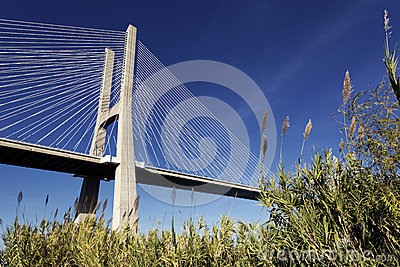 The famous Vasco da Gama bridge
