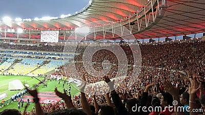 Fan de futebol no estádio de Maracana, Rio De janeiro