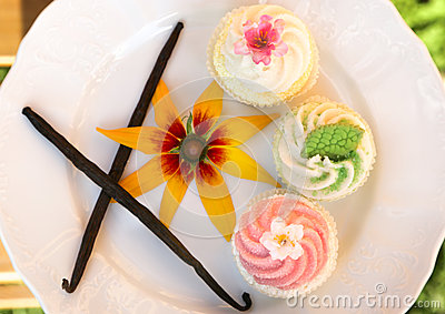 Fancy cakes with vanilla sticks and flower on white