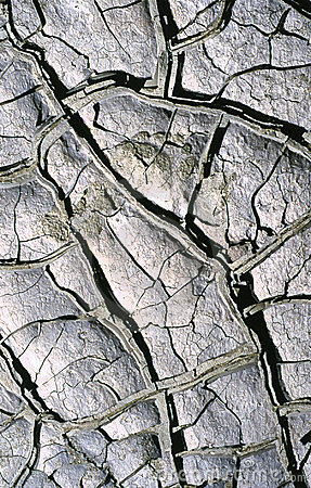Fango seco