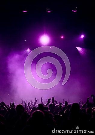 Fans violet