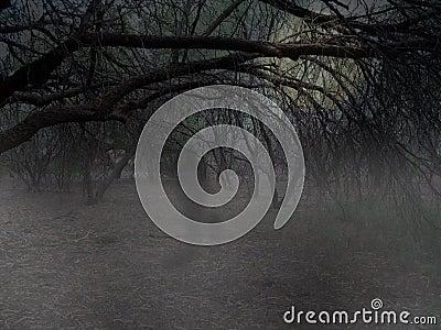 Fantasma en maderas