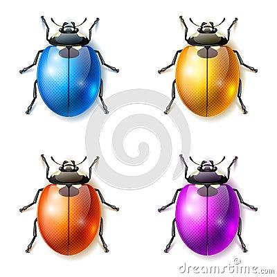 Fantastic beetles