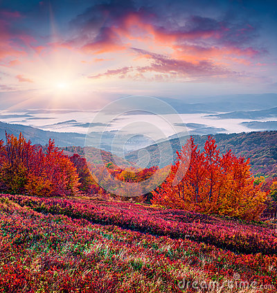 Free Fantastic Colors Autumn Landscape In The Carpathians. Royalty Free Stock Images - 95205359