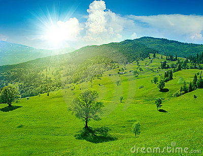 Fantastic green meadow in mountain