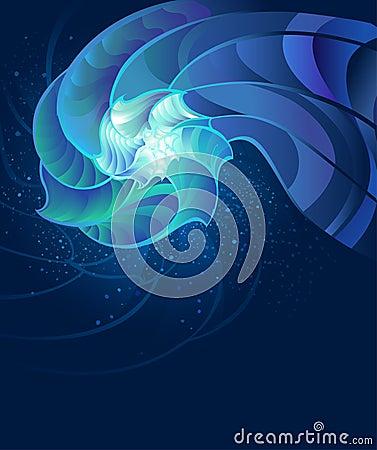 Fantastic seashell