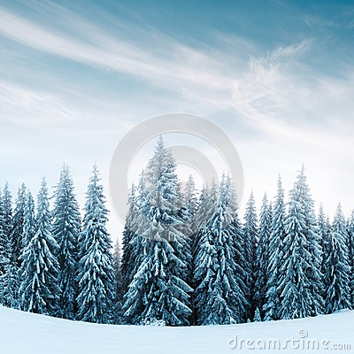 Free Fantastic Winter Landscape Royalty Free Stock Image - 106819266