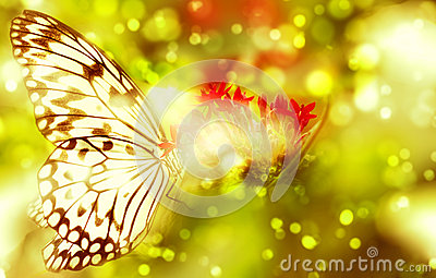 Fantasy butterfly on flower Stock Photo